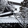 Photos: 東慶寺書院の屋根20120229