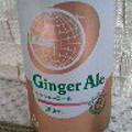 『富永貿易 神戸居留地 LASジンジャーエール』を飲む。低価格で買える...