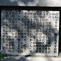 写真: 20110716_170624_raw