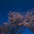 Photos: _1010622r