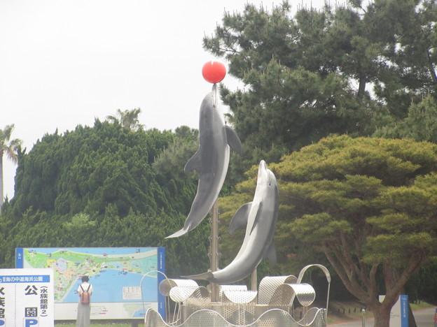 海の中道海浜公園にて  51