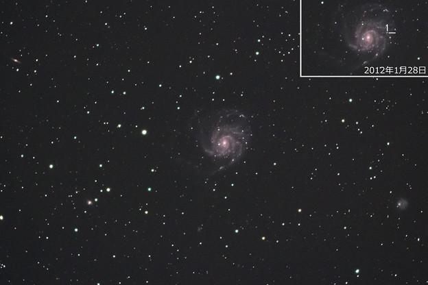 回転花火銀河M101の超新星(^^)