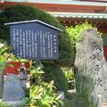 写真: 神田明神・銭形平次と八五郎の碑