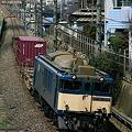 Photos: 「鹿島貨物」73レ