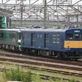 Photos: _MG_0193 アンパンマントロッコ列車(その1)