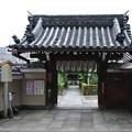 Photos: 地蔵院(椿寺) (1)