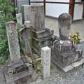 Photos: 地蔵院(椿寺) (6)、夜半亭宋阿の墓