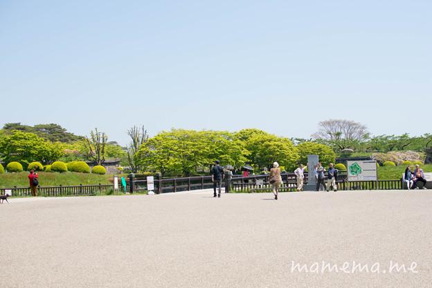 写真: DSC_0413