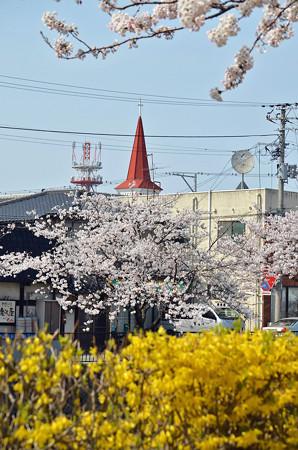 150412桜と三角屋根