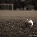 Photos: 置き忘れたボール