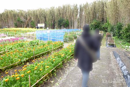 花日和農園