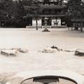 "Photos: 水に映る塔 ""Frozen music""(East pagoda)"