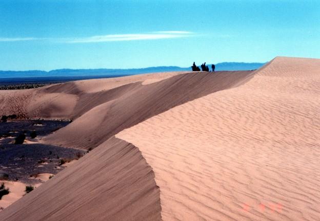 波紋と砂紋(風紋)の混同? モンゴル Moltsog Els with camels  ♪砂丘を越えて行きました♪