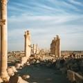 Photos: 長き列柱道路 パルミラ遺跡  Palmyra's colonnade、Syria