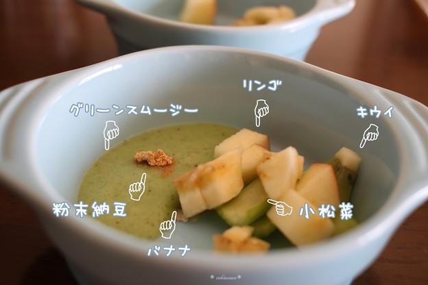 朝の わんこご飯+α