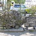 写真: さざれ石