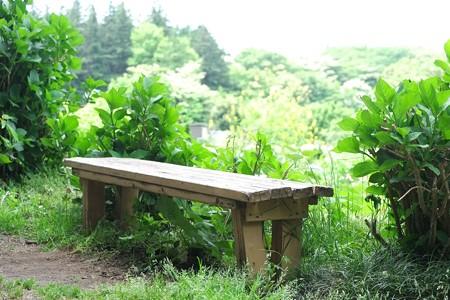 2015.05.06 瀬谷市民の森 土いじり場 ベンチ