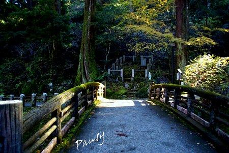 座禅石へ・・大雄山最乗寺さんぽ・・31