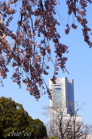 Yokohama-256