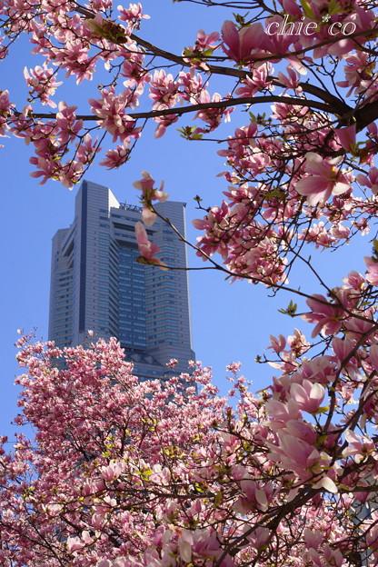 Yokohama-328