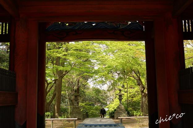 鎌倉-169