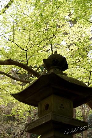 鎌倉-176