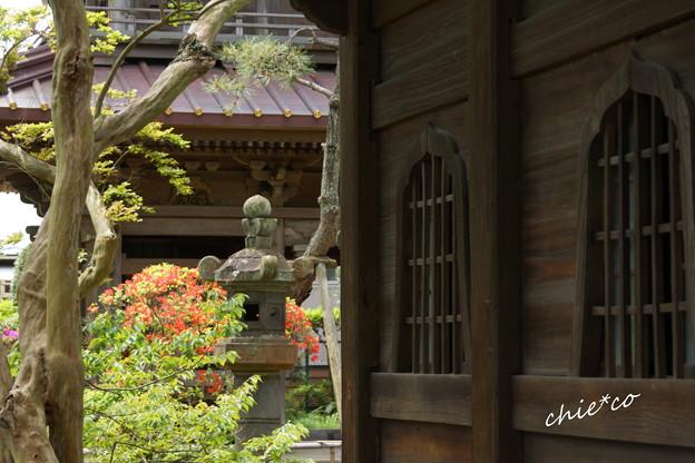 鎌倉 英勝寺-290