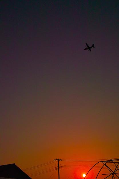 Photos: 夕暮れに飛ぶ