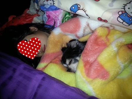 子供と犬の寝姿って最高に可愛い~♪
