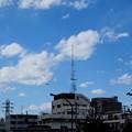 雲とカラスと電波塔