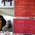 鬼怒川温泉春節祭