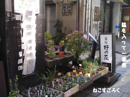 茶房 野の花 @ 銀座 1階は花屋