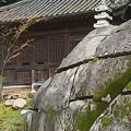 Photos: 庭石
