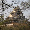 Photos: KINUJYO
