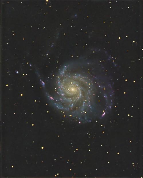 Photos: M101Test