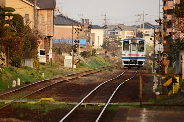 Photos: 住宅街を行く関東鉄道キハ2100形新塗装車 常総線稲戸井駅接近