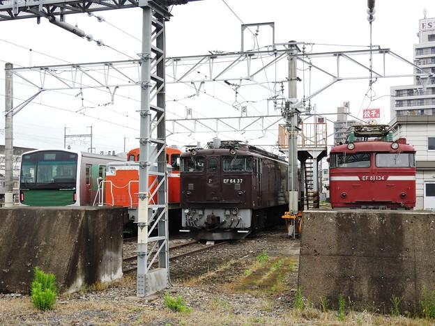 Photos: 今朝の宇都宮運転所留置線 EF64 37号機