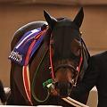 Photos: Daisho Jet 02