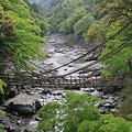 110510-35四国・中国地方ロングツーリング・祖谷のかずら橋