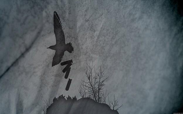 Photos: Bird Bomb