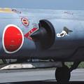 Photos: F-104J 76-8682 203sq 1982Aug
