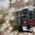 Photos: 梅と阪急9300系