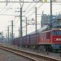 Photos: 4071レ【EF510-10牽引】