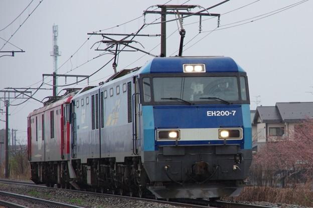 EH200 7牽引 EH500 47OM入場配給