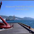 写真: 長崎帆船まつり 最終章?