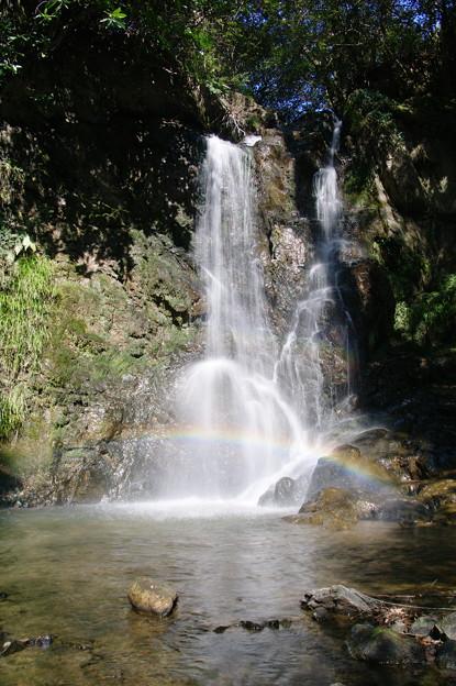 岩尾の滝 ささやかな彩り
