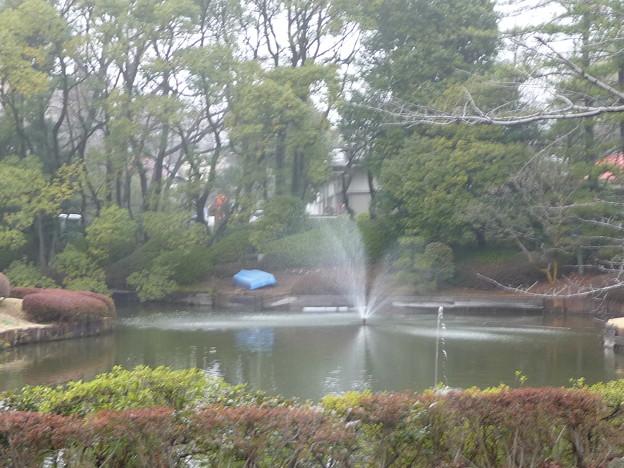玉川大学噴水