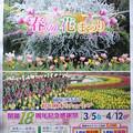 写真: あしかがフラワーパーク「春の花まつり」お勧め観光案内
