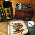 Photos: 川魚で一杯 最高