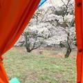 Photos: テントの前